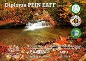 ea4rka_pein_eaff
